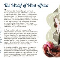 Day 07 - The Wolof of West Africa